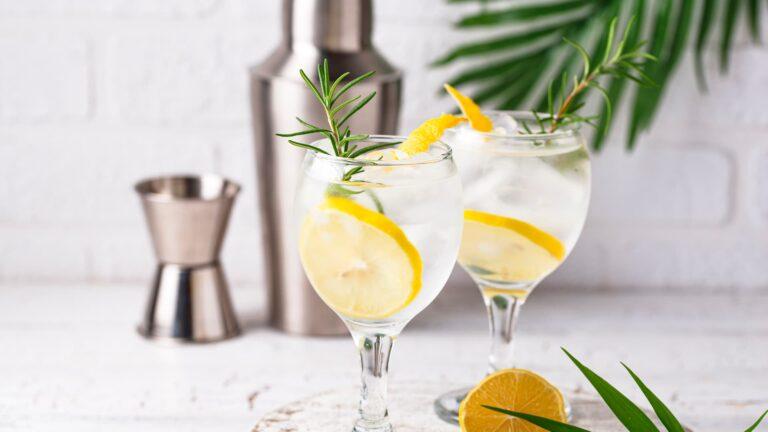 El 19 de octubre es el Día Internacional del Gin Tonic: historia y orígenes